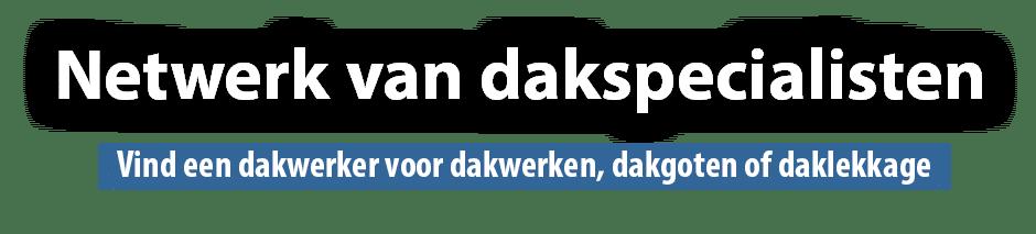 Leon Vos dakwerken