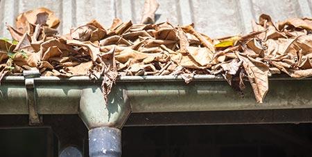 dakgoot onderhoud Waasmunster